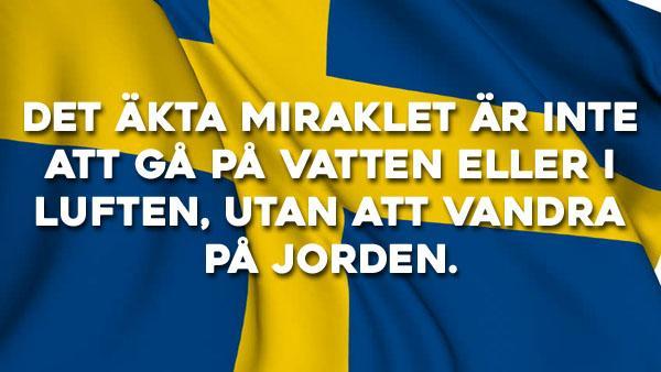 Svenska ordspråk att minnas 51-75